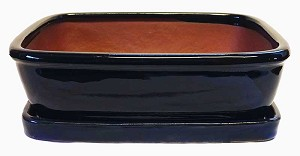 "Michael Carr - 10"" Bonsai Pot - Dark-Blue Rectangle w/Rounded Corners & Tray"