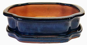 "Michael Carr - 10"" Bonsai Pot - Ocean-Blue Squared Clover with Tray"