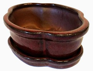 "Michael Carr - 6"" Bonsai Pot - Ox Blood Red Clover with Tray"