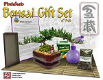 Finished Bonsai Gift Set #1 in 6