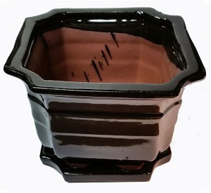 "LOTUS INTERNATIONAL - 7"" Shanghai Pot - Glossy Black w/ attached tray"